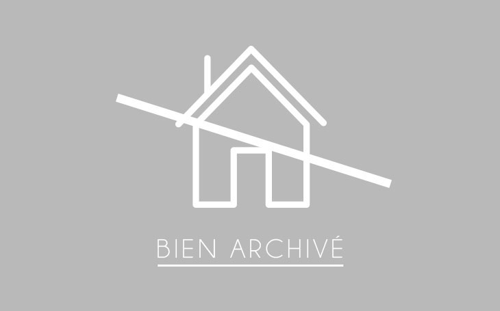 A.C.B.I. - AGENCES CHRISTINE BOYER IMMOBILIER : Maison / Villa | VENDOME (41100) | 280 m2